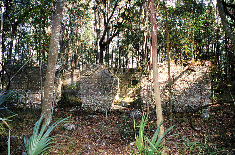 17 Tabby slave house ruin in the Thicket in McIntosh County, Georgia