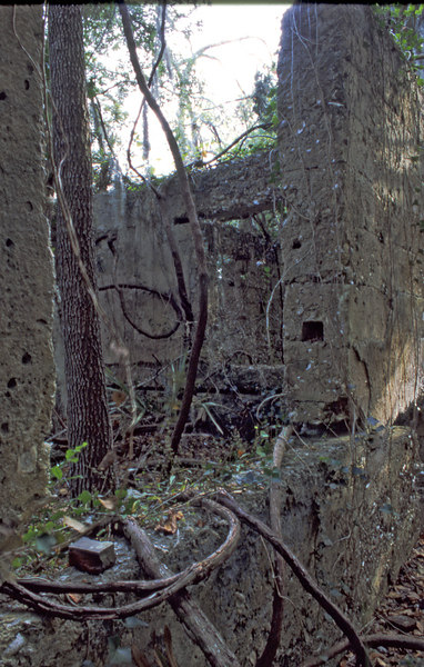 34 Distillery and Secondary Building or Sugar Mill ruins in the Thicket in McIntosh County, Georgia