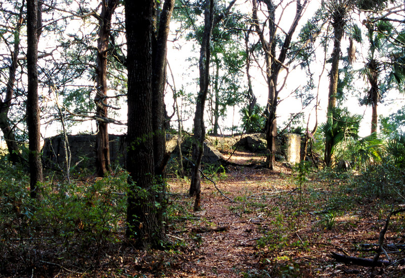 41 Distillery and Secondary Building or Sugar Mill ruins in the Thicket in McIntosh County, Georgia
