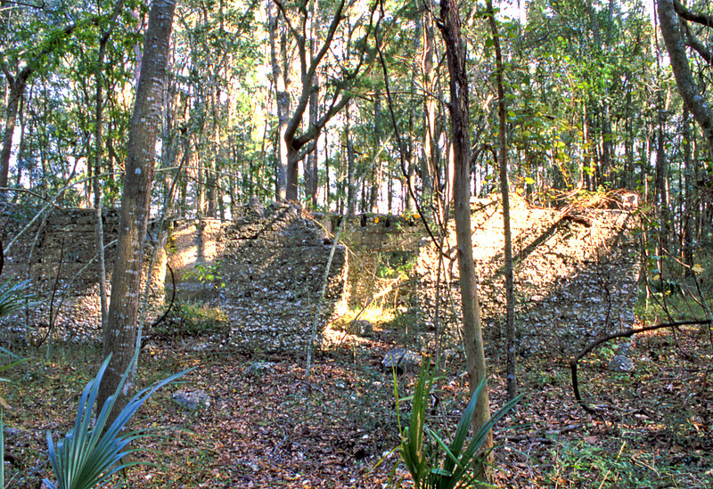 16 Tabby slave house ruin in the Thicket in McIntosh County, Georgia