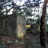 43 Distillery and Secondary Building or Sugar Mill ruins in the Thicket in McIntosh County, Georgia