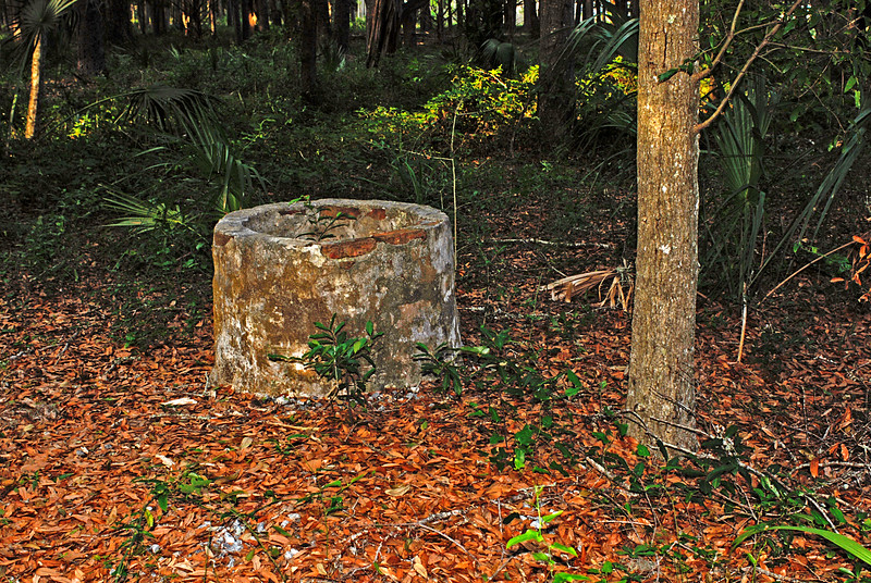 38 Slave Quarters and Distillery and Two Secondary Buildings or Sugar Mill ruins in the Thicket in McIntosh County, Georgia Carnochan Area
