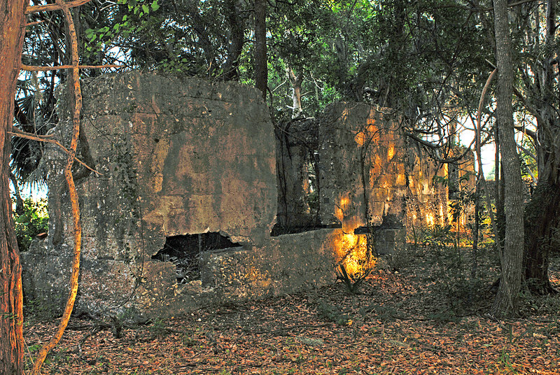 32 Slave Quarters and Distillery and Two Secondary Buildings or Sugar Mill ruins in the Thicket in McIntosh County, Georgia Carnochan Area