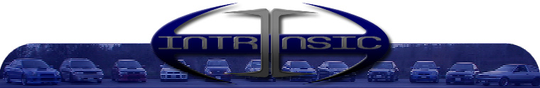JANUARYThe first design of the Team Intrinsic website, with the header image taken from the 2003 Holiday Bash