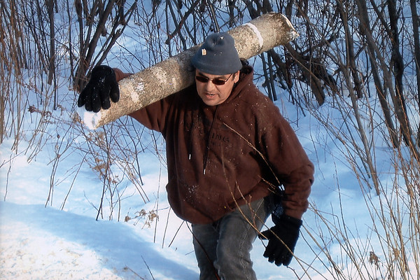 Frank Weese carries one of the black ash logs out of the woods to put in his truck.