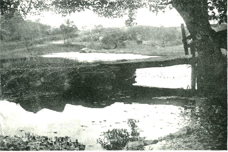 Three Rivers Rustic Bridge