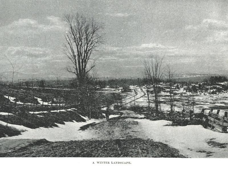 Tolland Winter Landscape