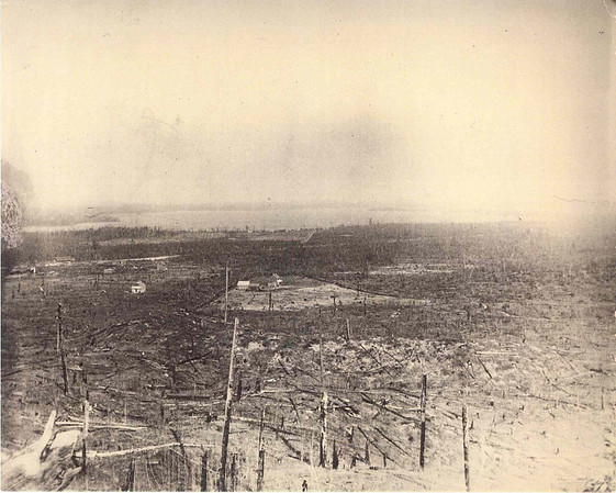 Photo courtesy of Traverse Area Historical Society<br /> timber cutover lands, often scorched by forest fires, were seen throughout northern Michigan after the lumber era. This 1909 photograph was taken from a hill looking northeast toward Karlin and Green Lake.