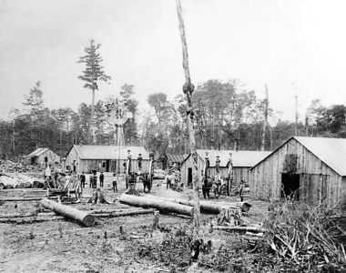 "Photo courtesy of Traverse Area Historical Society<br /> ""Big Wheels,"" like these pictured in an area lumber camp, were invented in the mid-1870s by Manistee carriage maker Silas Overpack. They helped escalate the pace of lumbering by turning it from a winter-only occupation into a year-round business. Dewitt C. Leach sold the Grand Traverse Herald to Thomas T. Bates just about that time."