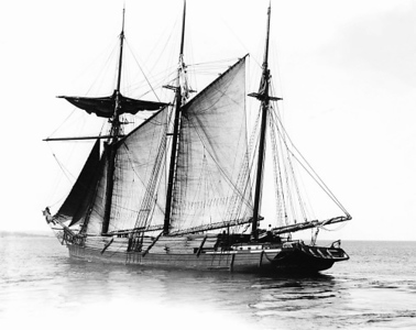 Photo courtesy of Traverse Area Historical Society The schooner <i>Oak Leaf</i>, built in 1886, is loaded to capacity with pine headed for Chicago.