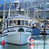 Gavia_Built_1979_Oak_Harbor_Lou_Barr_Striker_Juneau