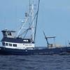 Rose Marie  TracyCheri Built 1978 El Morro Boat Wks Morro Bay  Jack Carpenter