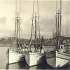 Arctic_Heron_Pacific_Warrenton_1930,Smiley Lambert Lumber Mill in Background,