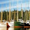 Photographic,Afton Coon,Cameo,John Turner,Adak,Joe Riederer,Kiska,Joe Nick Riederer,1949 Bingham Cove,Alaska,