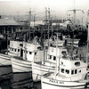 JF Pomilia,Josephine,Fankie Jo,Paulie Boy,Pic Taken San Francisco,Late 1940's,