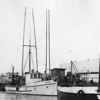 Rex,Selma J,Built 1926 Seattle,Knute Rodal,Robert Mason,George Ratcliff,Pic Taken 50's,Eureka,