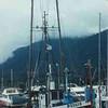 Padgie  Built 1936 Seattle  Edward Wyckoff   C W Jacobson  Irving Swanson  John Johnson  Gerald  Reinholdt  Gene Nelson   Sunk 1990 Yakutat Bay