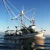 Kea Lynn,Sea Bee,Kea Lyn,Built 1948 Alf Hansen Seattle,Steve Eide,Walter Jensen,Richard Duarte,Terry Duman,