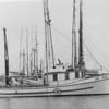 Ann Marie,Built 1948 Trypple & Everett Seattle,Built For John Ysland,Pic Taken Eureka 1952,Einar Lovvold,