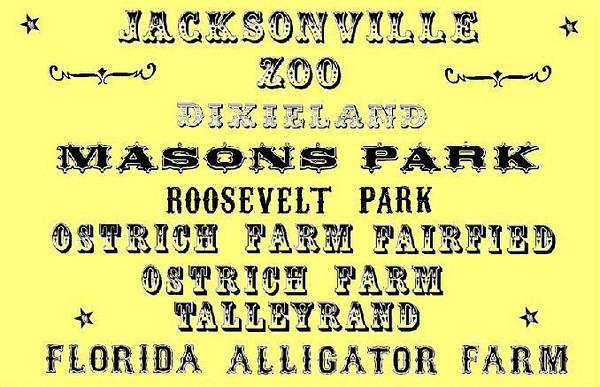 The Trolley Park Phenomena - Metro Jacksonville