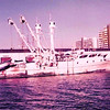 Pan Pacific,Lucky Strike, Docked in San Diego,1970's,