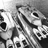 San_Diego_Marine_Speedboats