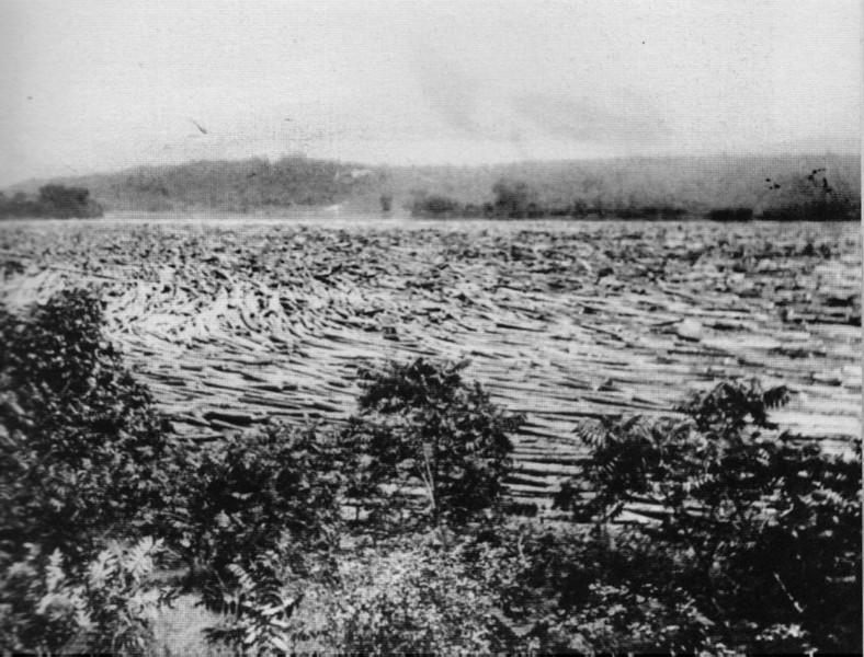 Turners Falls 1903 Log Jam