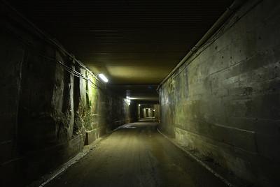 Westwood Quarry second vist 2009