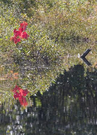 Waterboro Maine 09