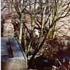 Waterfoot Lumb Holes Mill Overflow 1984