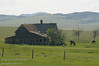 An old farm house near Pincher, Alberta.  In the background the Rockies are visible.