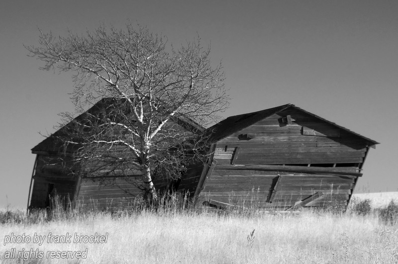 Old Grain Bins