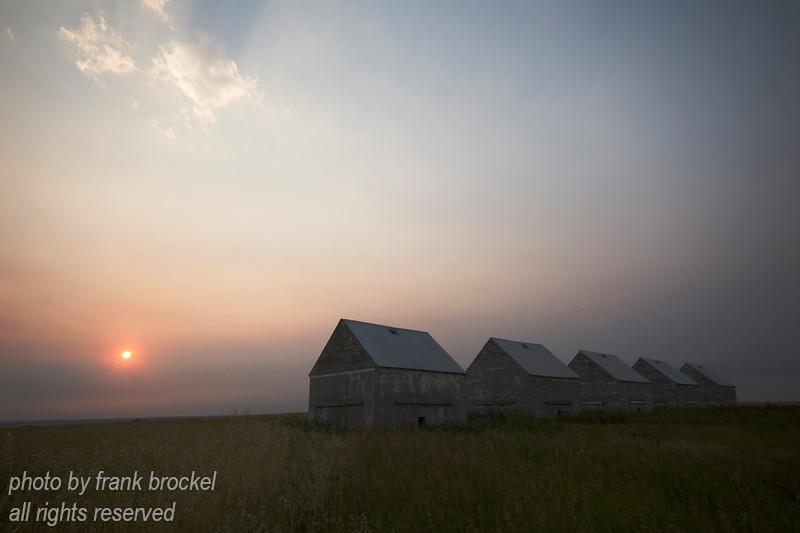 5 old Graineries in a Field near Beiseker, Alberta