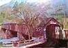 Charlemont Old Covered Bridge
