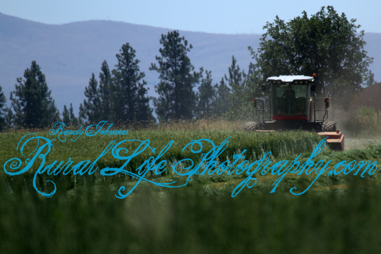 Working The Ranch Goldendale Wathington