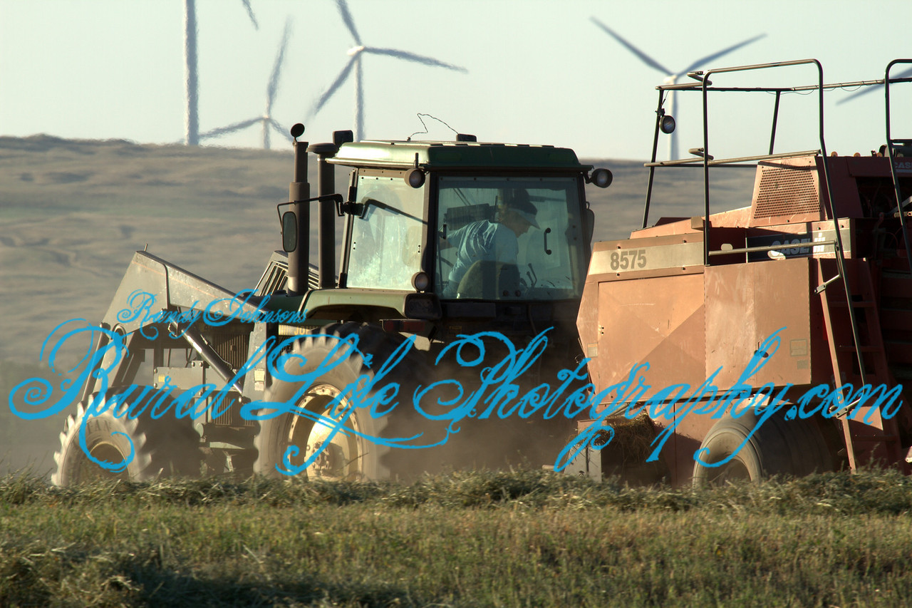 Working The Ranch Goldendale Washington