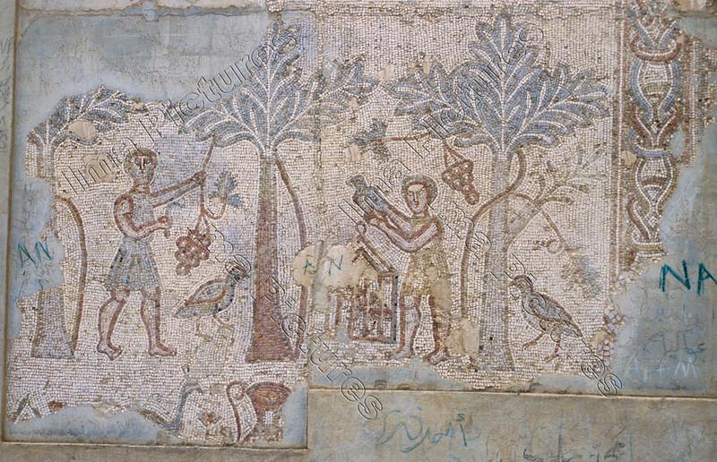 Mosaic,mozaïk,mosaïque,Bosra