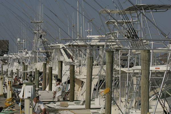 Fishing Trips North Carolina