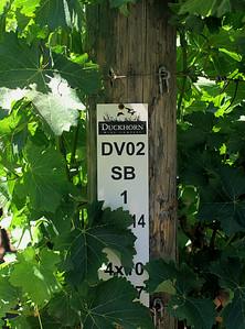 Wine Marker
