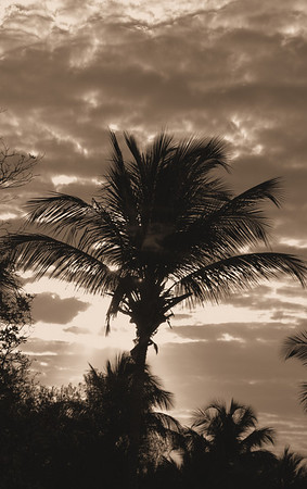 Sunset in Sepia Ponce, Puerto Rico  March 6, 2007