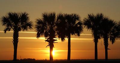 04/11/08  Palms at Sunrise Oldsmar, FL