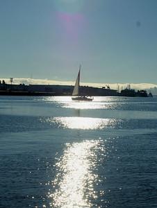 Sailing in a waning sun Oakland, CA September 16, 2010