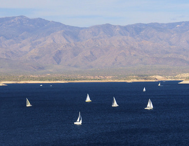White Boats Lake Pleasant, AZ November 20, 2010