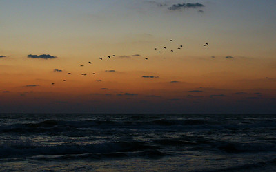 Pre-sunrise Flight South Padre Island, TX October 3, 2010