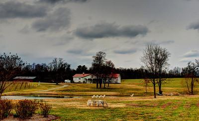 Laurel Gray Winery North Carolina February, 2013