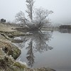 06 Conroys Dam