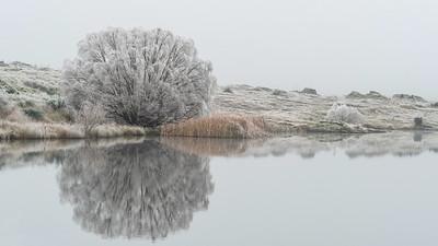 02 Hoar frost Butchers Dam