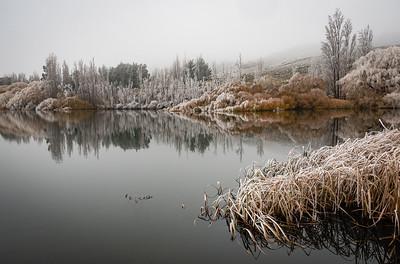 06  Hoar frost