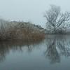 04 Conroys Dam