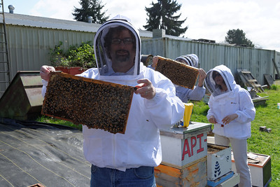 Hands - On Beekeeping Class - April 12, 2014
